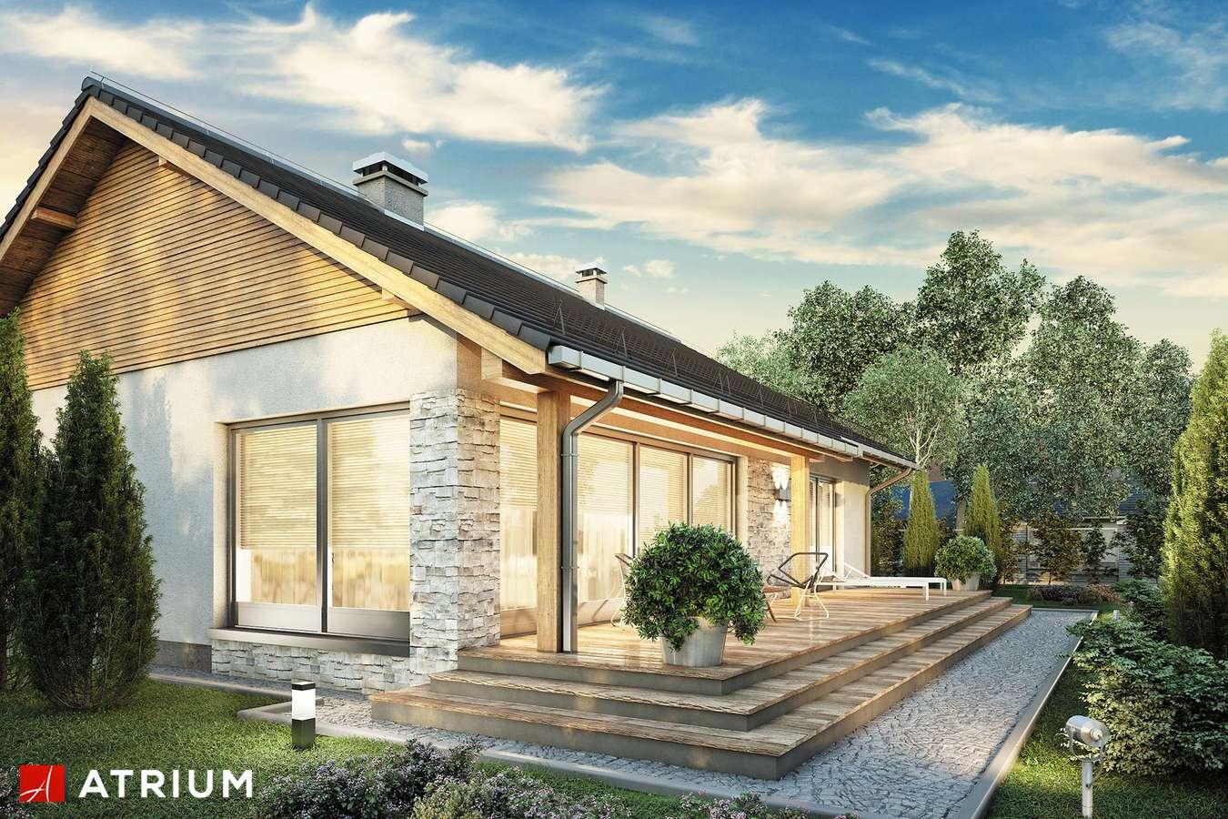 Projekty domów - Projekt domu parterowego ROY III - wizualizacja 2