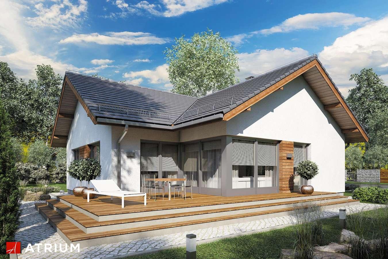 Projekt domu parterowego AMBER XI - wizualizacja 2