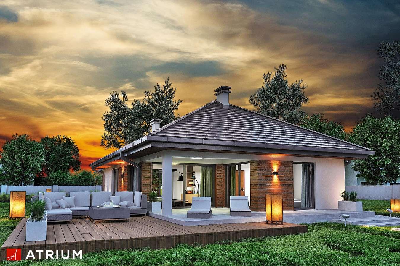 Projekty domów - Projekt domu parterowego SFINKS VI - wizualizacja 1