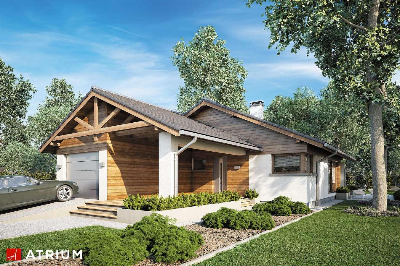 Projekty domów - Projekt domu parterowego PELIKAN III PLUS - wizualizacja 1 - wersja lustrzana