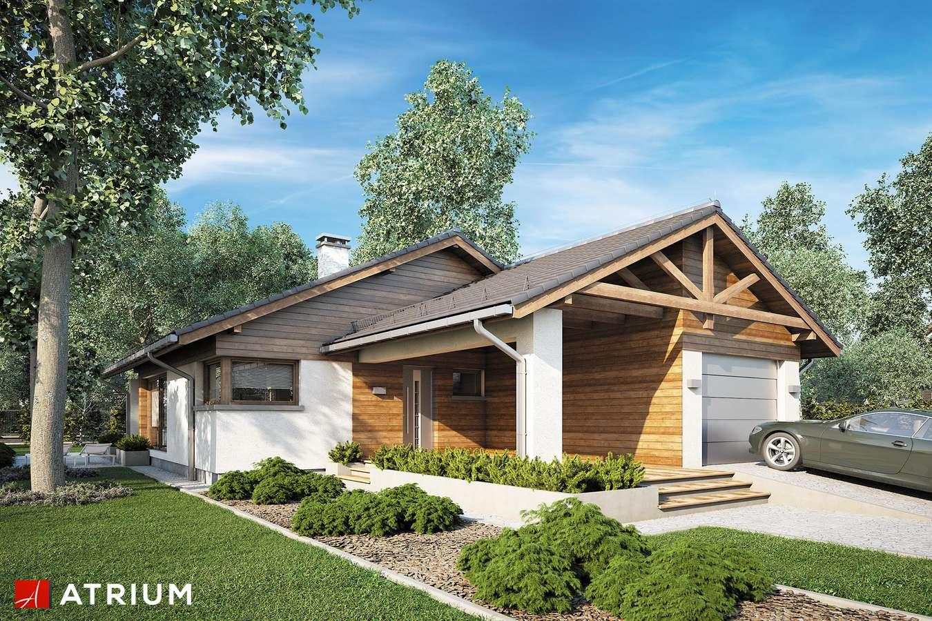 Projekty domów - Projekt domu parterowego PELIKAN III PLUS - wizualizacja 1