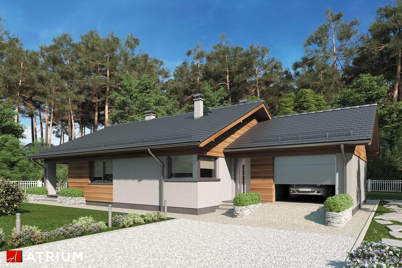 Projekty domów - Projekt domu parterowego KOS IV - wizualizacja 1