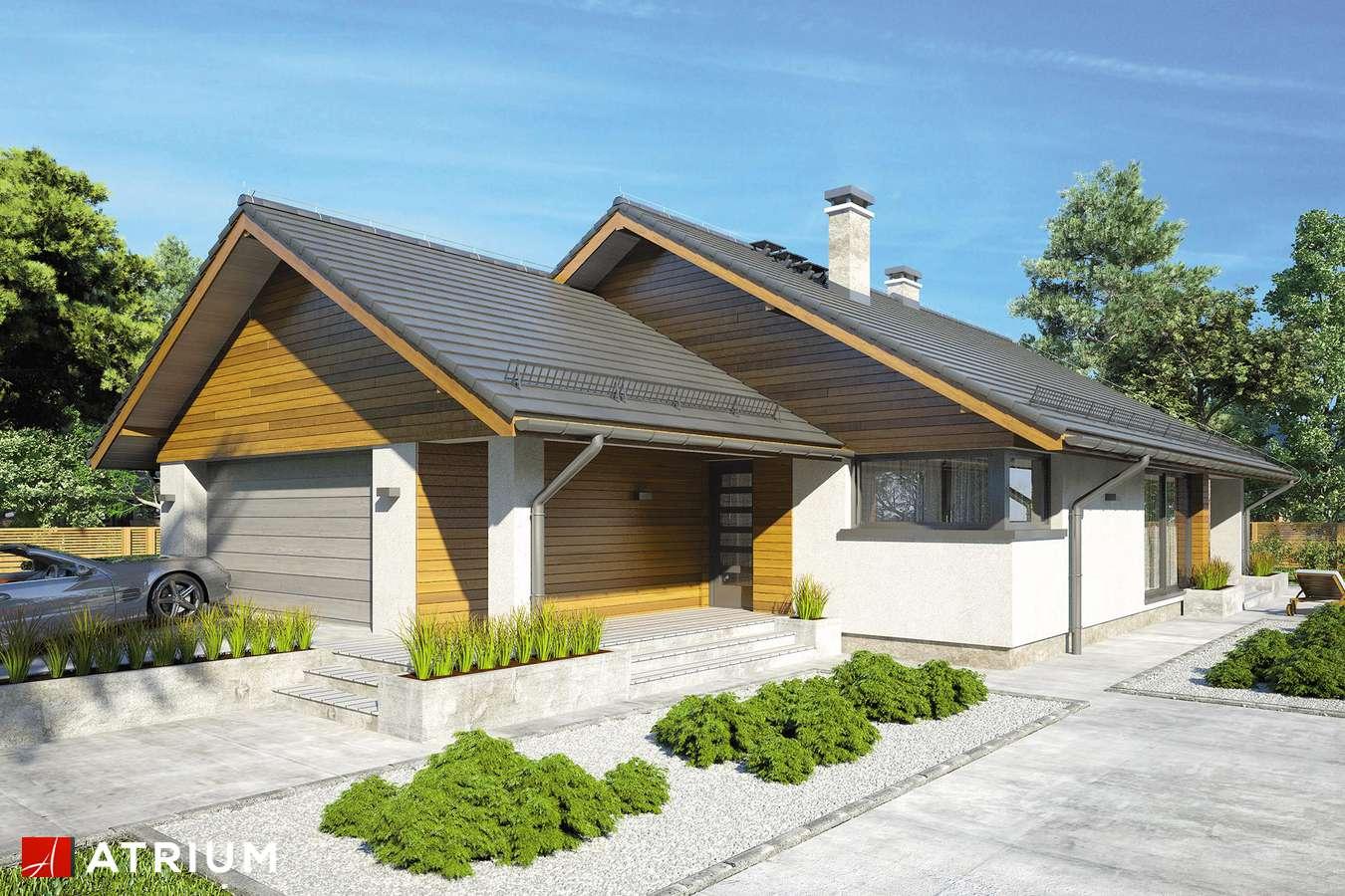 Projekty domów - Projekt domu parterowego PLISZKA V - wizualizacja 1 - wersja lustrzana