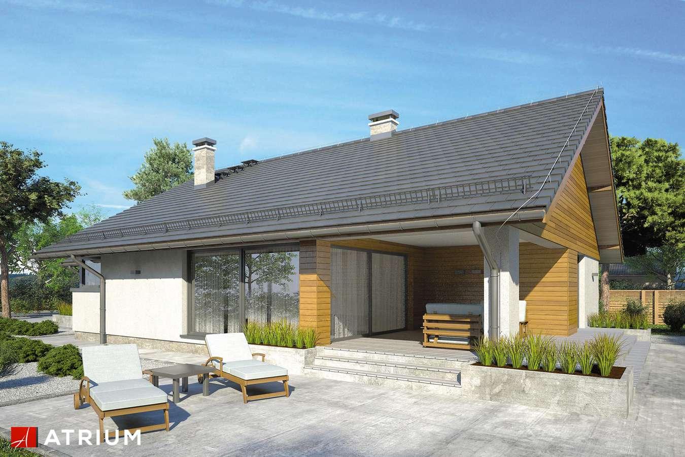 Projekty domów - Projekt domu parterowego PLISZKA V - wizualizacja 2 - wersja lustrzana