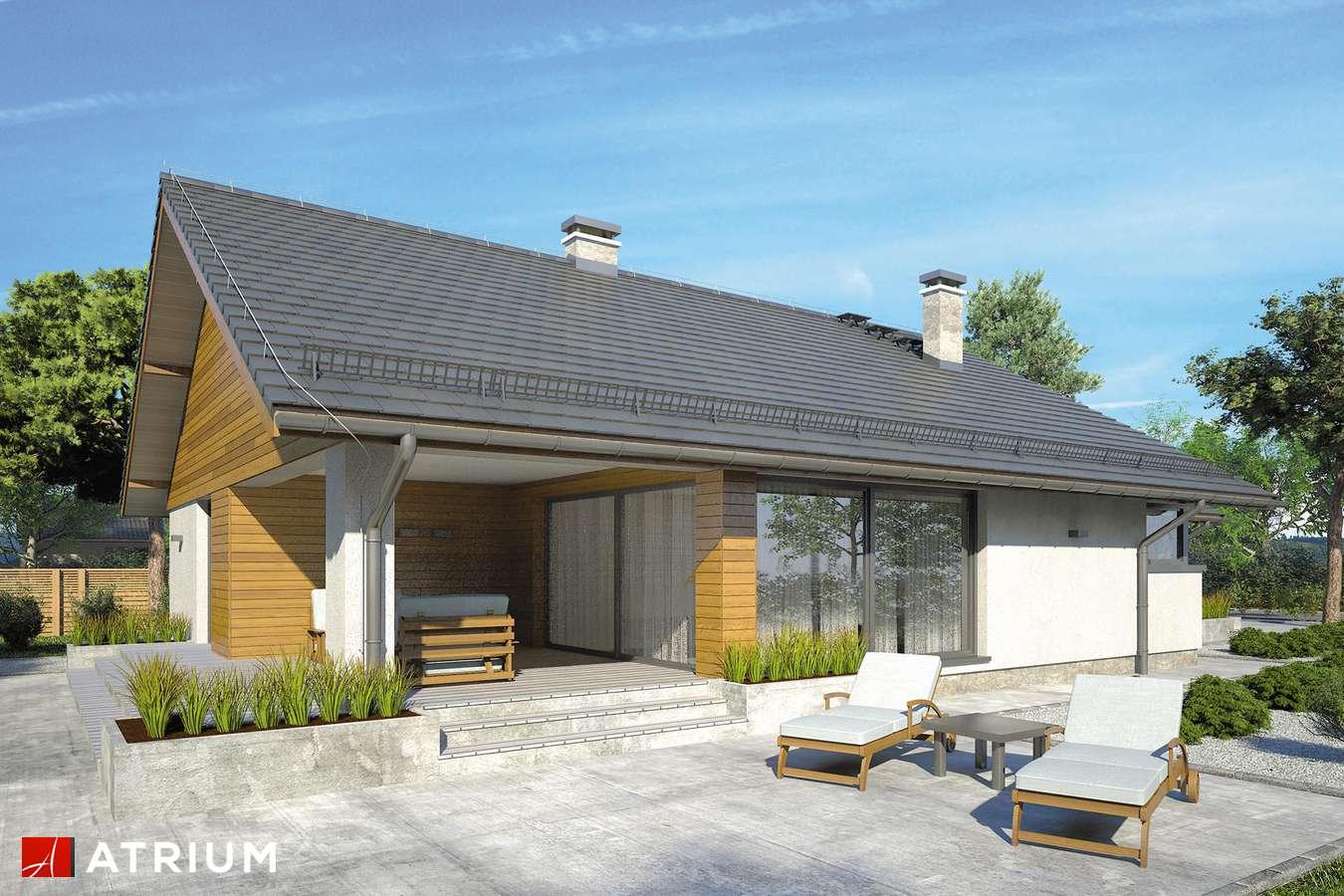 Projekty domów - Projekt domu parterowego PLISZKA V - wizualizacja 2