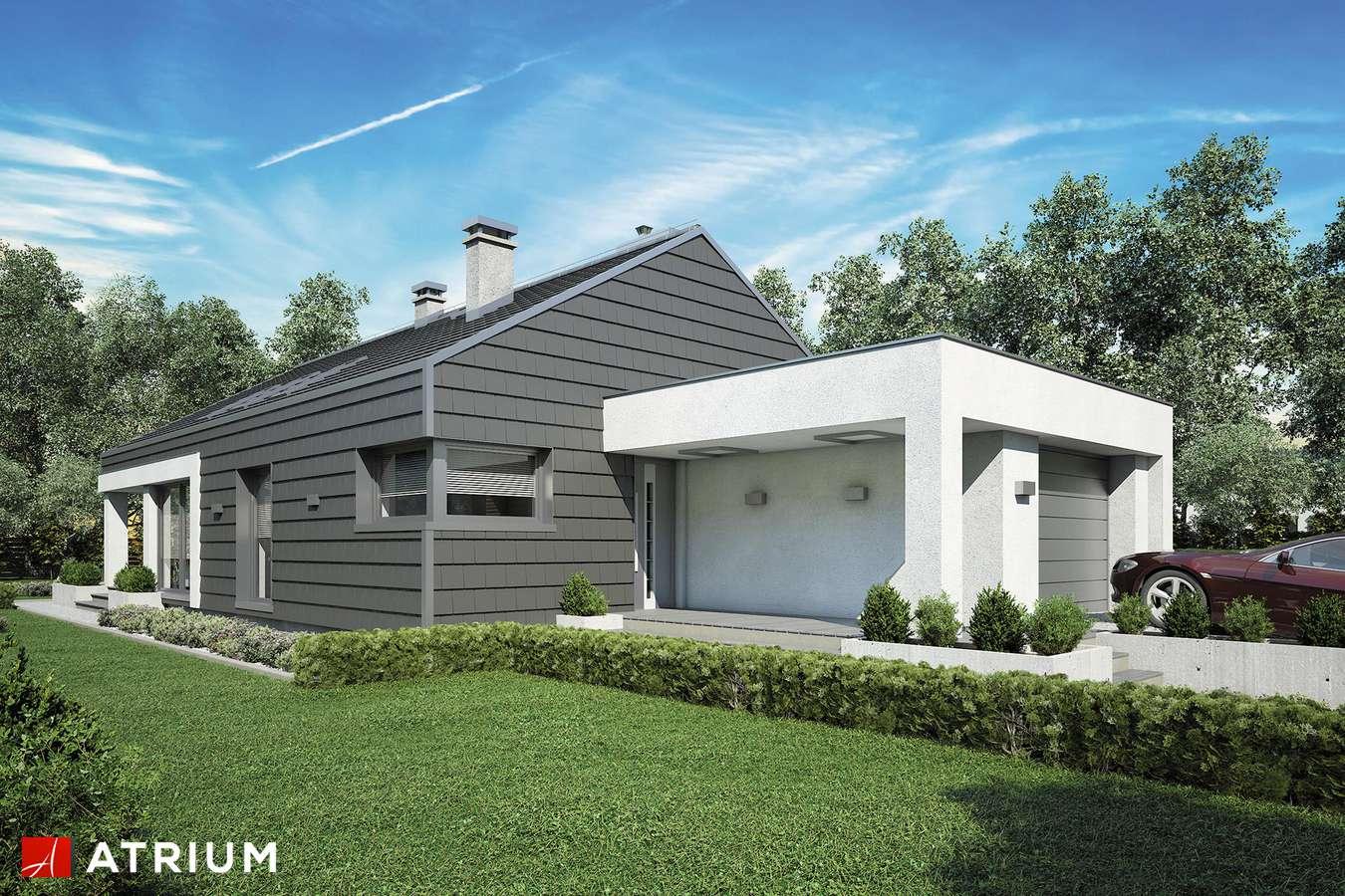 Projekty domów - Projekt domu parterowego PELIKAN SLIM III - wizualizacja 1
