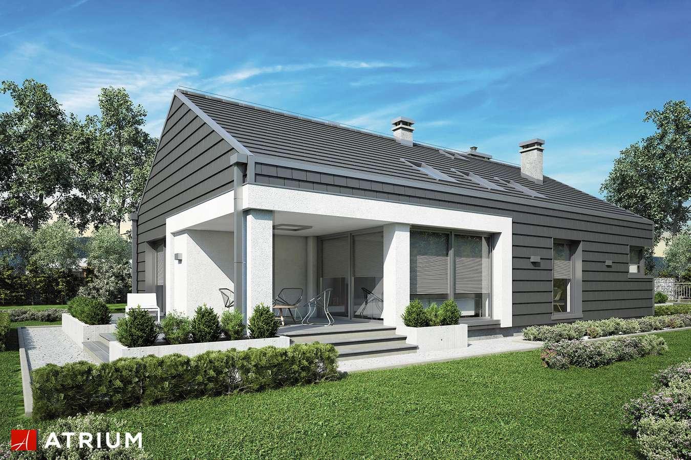 Projekty domów - Projekt domu parterowego PELIKAN SLIM III - wizualizacja 2