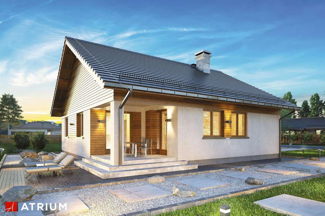 Projekty domów - Projekt domu parterowego BURSZTYN IV - wizualizacja 2