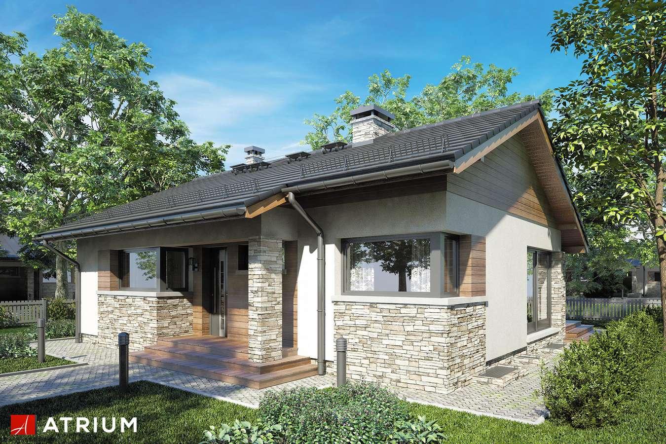 Projekty domów - Projekt domu parterowego RICARDO PLUS - wizualizacja 1