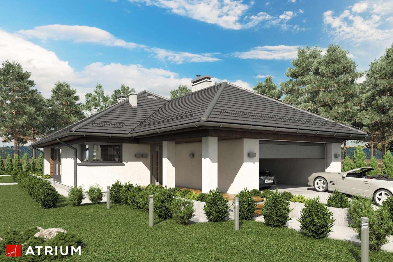Projekty domów - Projekt domu parterowego MORGAN II - wizualizacja 1