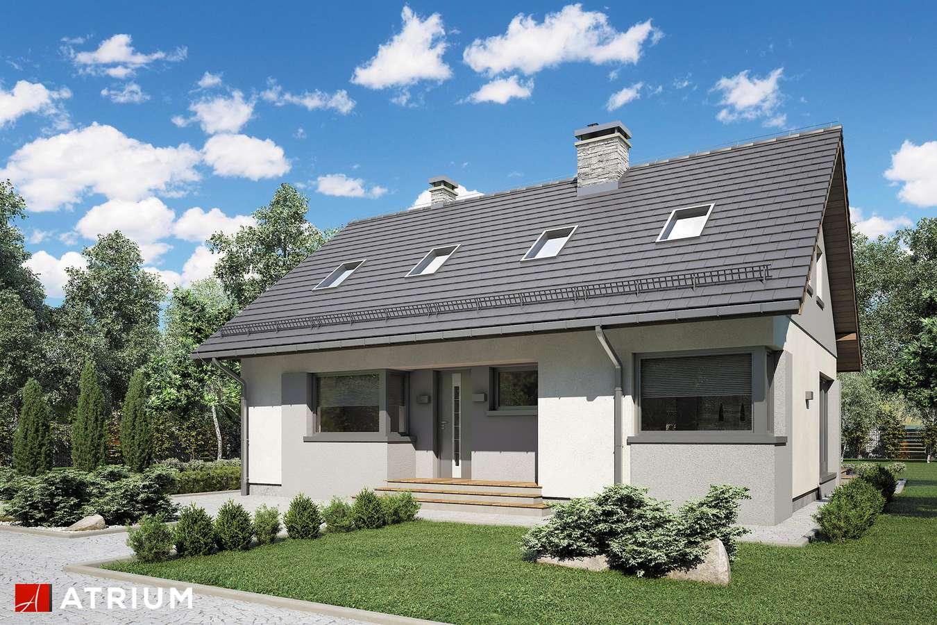 Projekty domów - Projekt domu z poddaszem ROLAND III - wizualizacja 1