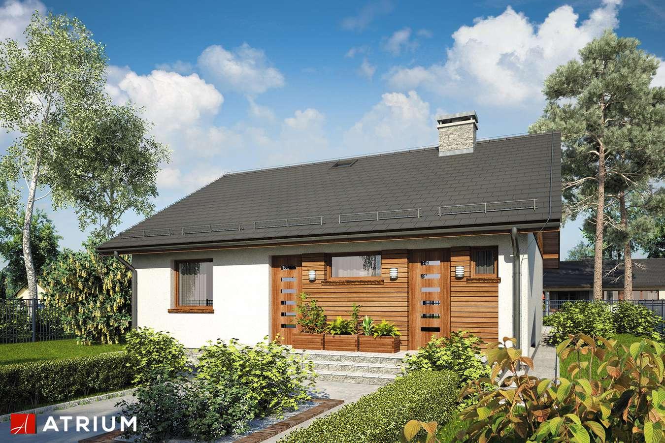 Projekty domów - Projekt domu parterowego REMIK MAX SZ - wizualizacja 1 - wersja lustrzana