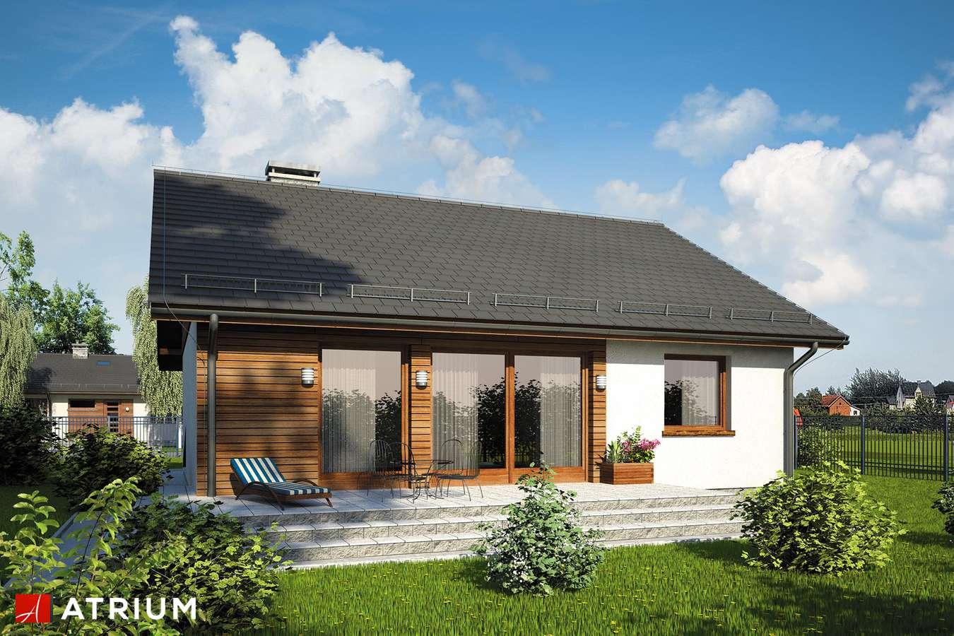 Projekty domów - Projekt domu parterowego REMIK MAX SZ - wizualizacja 2 - wersja lustrzana