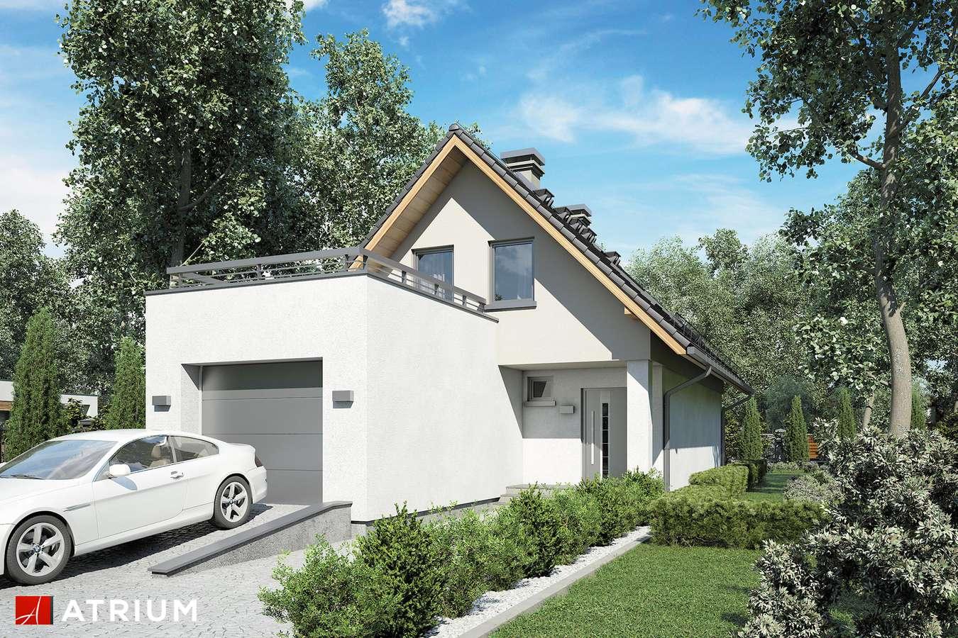 Projekty domów - Projekt domu z poddaszem MAJA III - wizualizacja 1