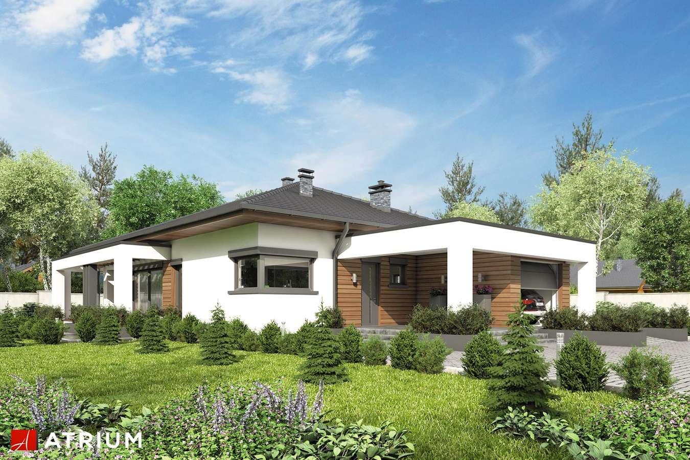Projekty domów - Projekt domu parterowego SARDYNIA IV BIS - wizualizacja 1