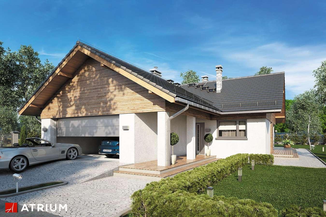 Projekty domów - Projekt domu parterowego WINSTON XVI SZ - wizualizacja 1 - wersja lustrzana