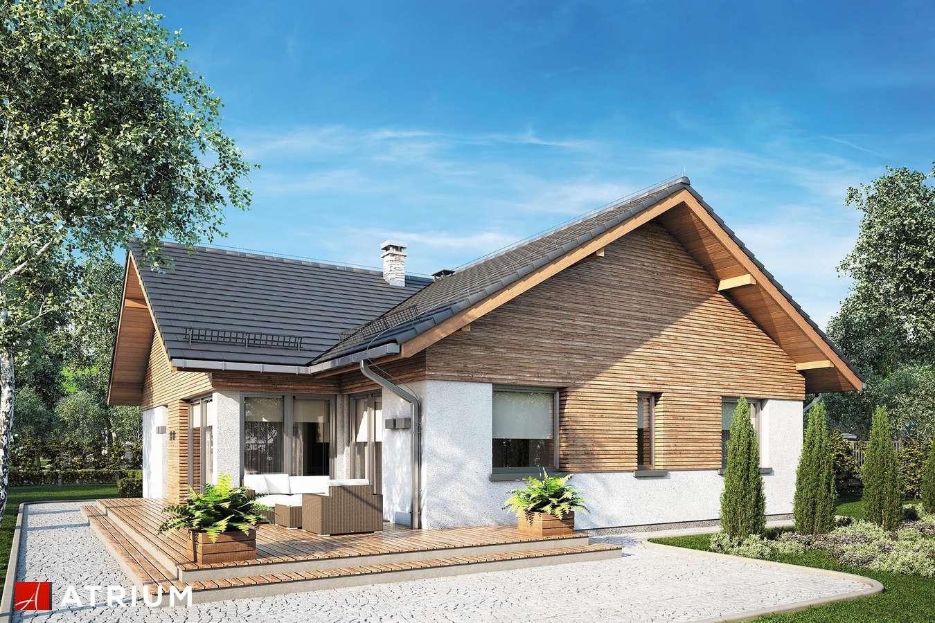 Projekty domów - Projekt domu parterowego WINSTON XVI SZ - wizualizacja 2 - wersja lustrzana