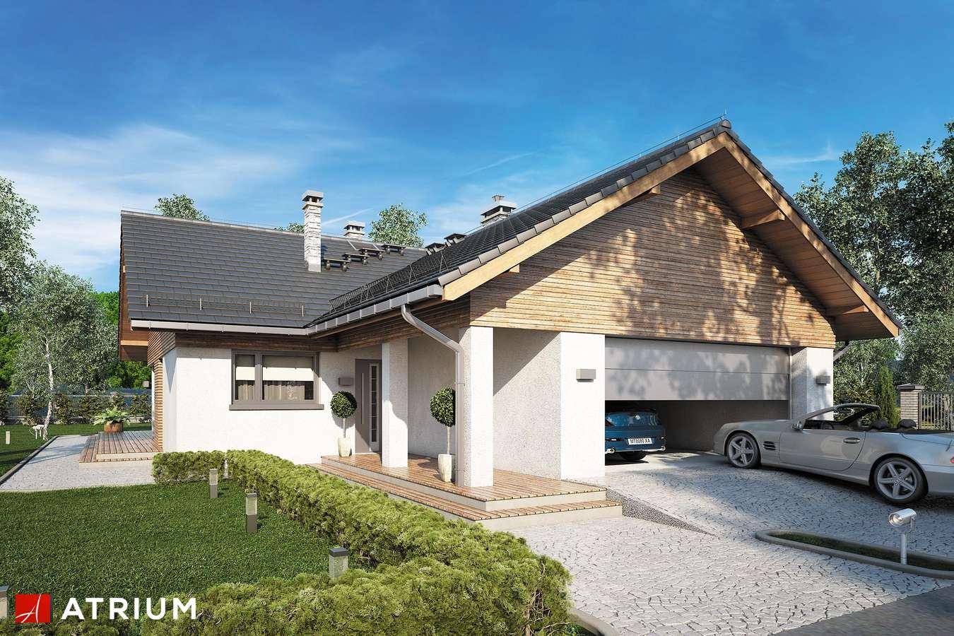 Projekty domów - Projekt domu parterowego WINSTON XVI SZ - wizualizacja 1