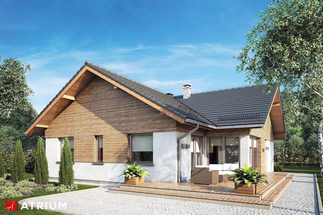 Projekty domów - Projekt domu parterowego WINSTON XVI SZ - wizualizacja 2
