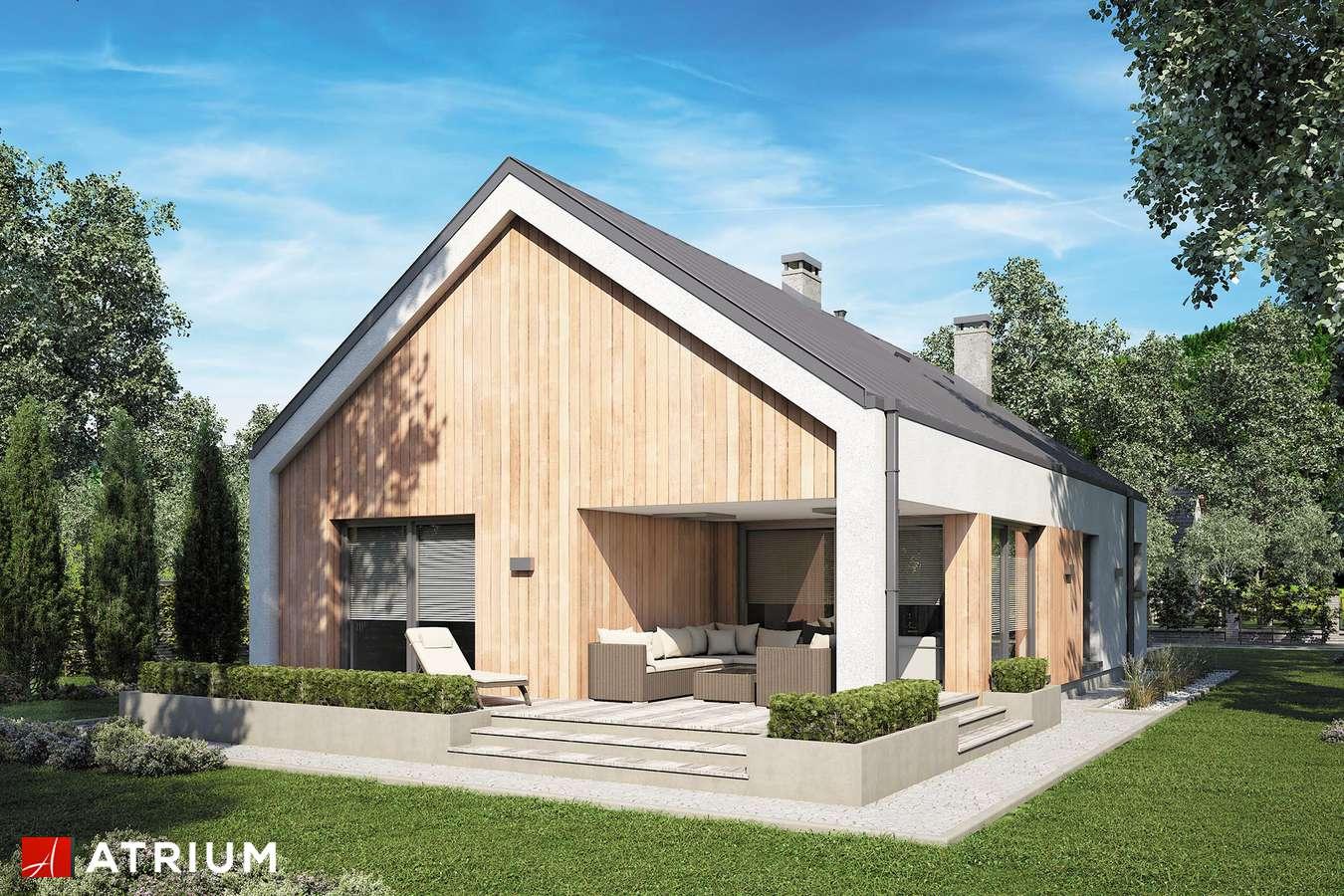 Projekty domów - Projekt domu parterowego PELIKAN SLIM IV - wizualizacja 2