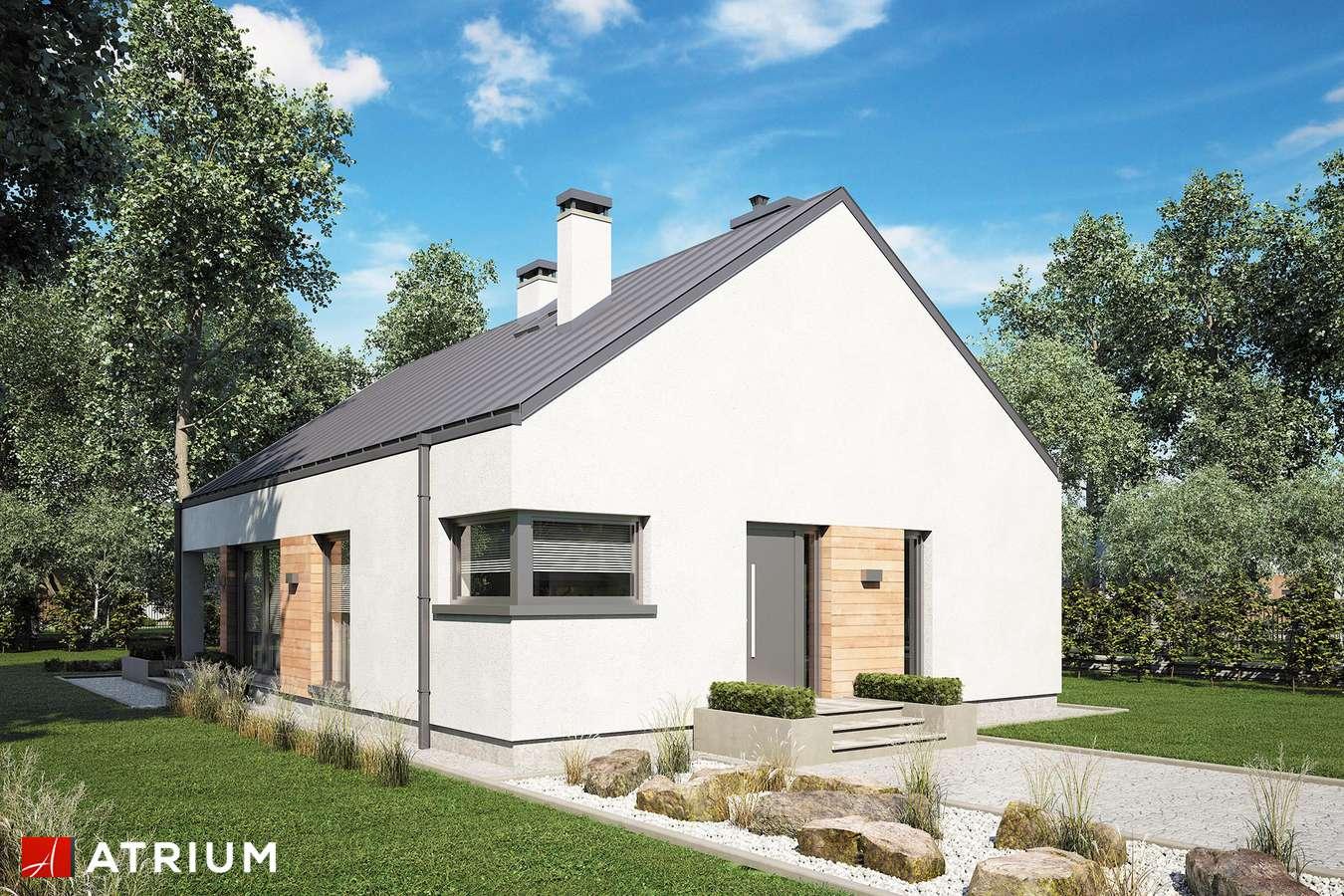 Projekty domów - Projekt domu parterowego PELIKAN SLIM V - wizualizacja 2