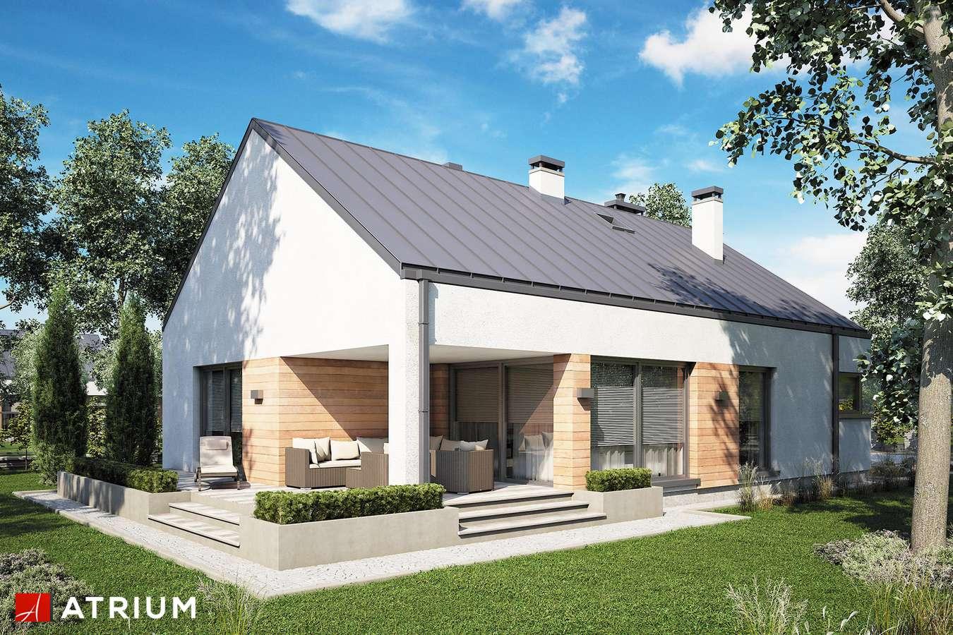 Projekty domów - Projekt domu parterowego PELIKAN SLIM V - wizualizacja 1