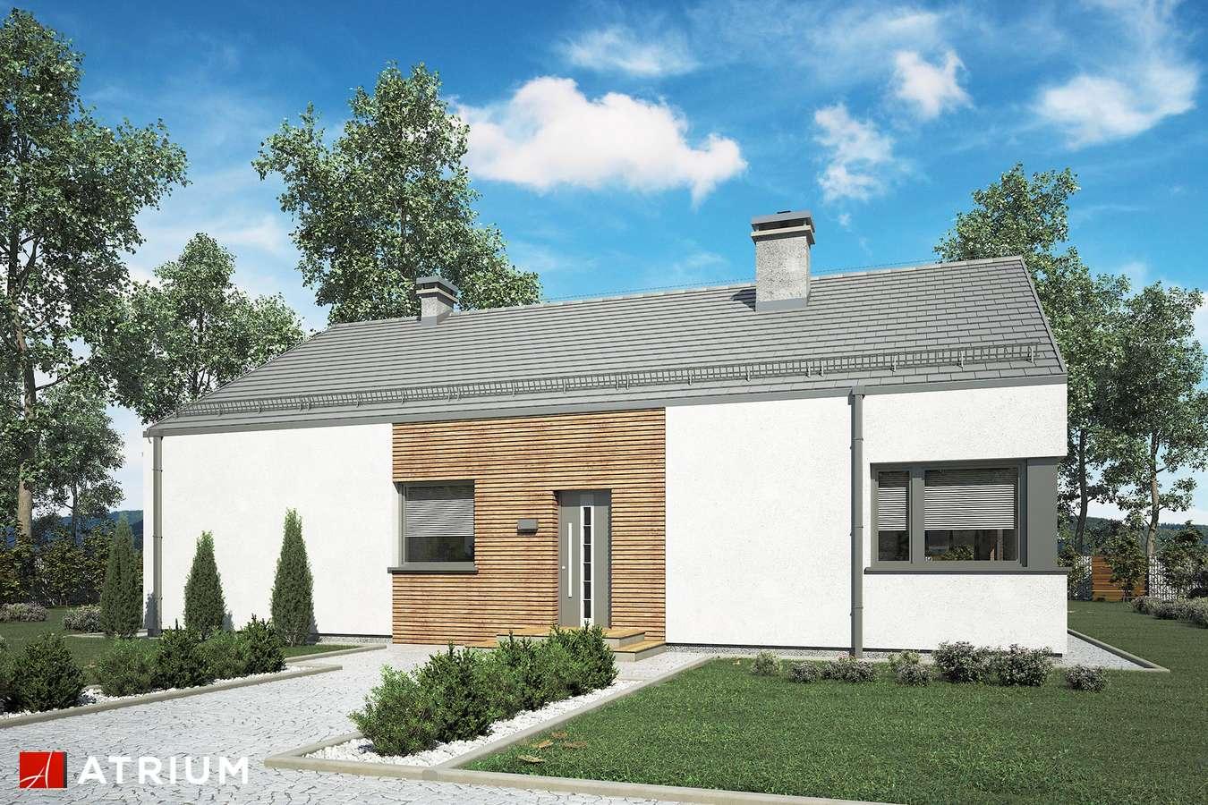Projekty domów - Projekt domu parterowego MINORKA II - wizualizacja 2