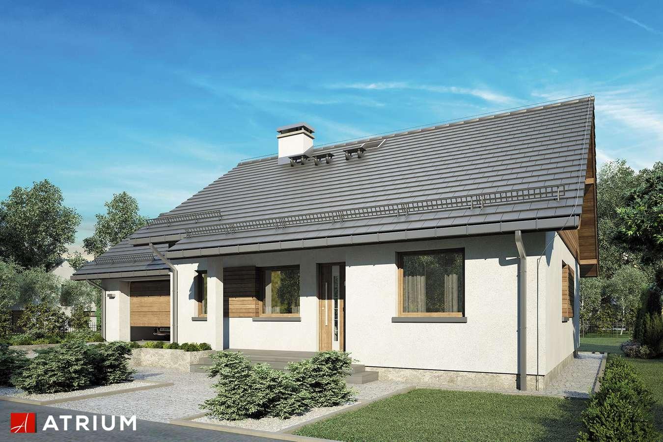 Projekty domów - Projekt domu parterowego REMIK VII - wizualizacja 1