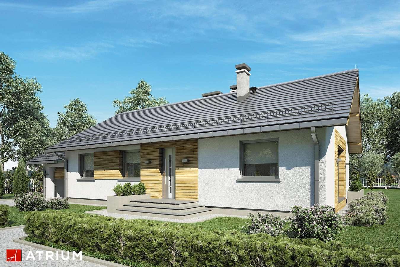 Projekty domów - Projekt domu parterowego AURORA III - wizualizacja 1