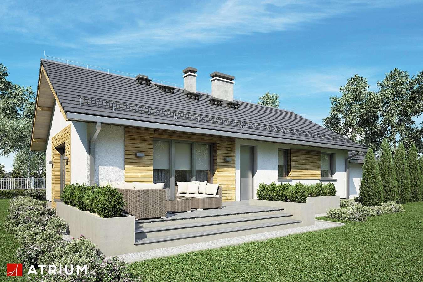 Projekty domów - Projekt domu parterowego AURORA III - wizualizacja 2