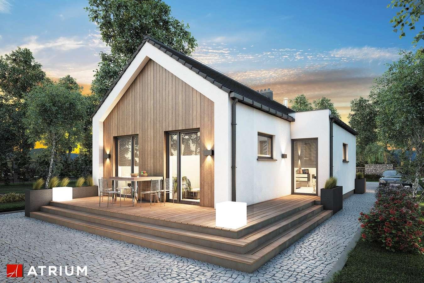 Projekty domów - Projekt domu parterowego NEPTUN III - wizualizacja 2 - wersja lustrzana
