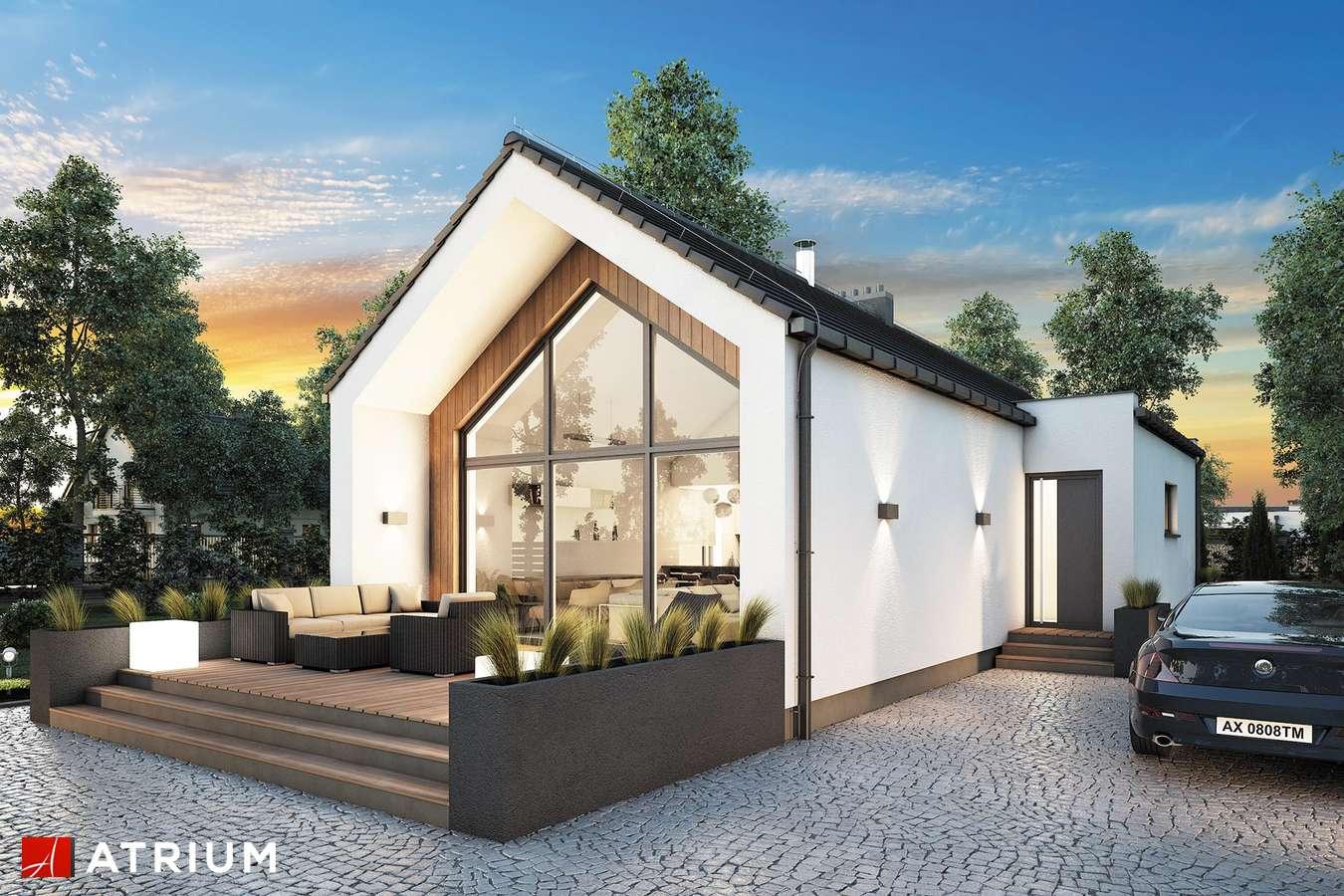 Projekty domów - Projekt domu parterowego NEPTUN III - wizualizacja 1