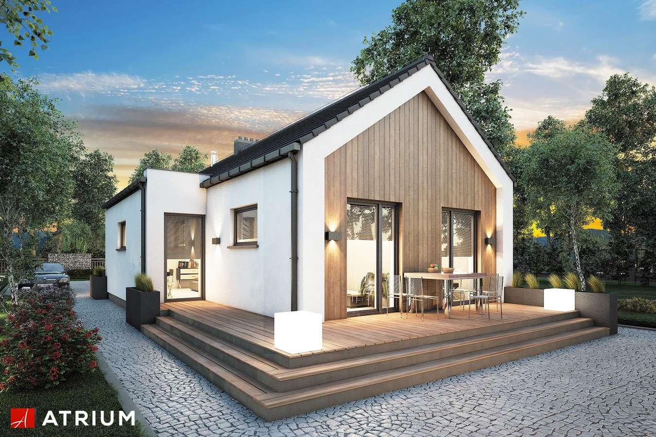 Projekty domów - Projekt domu parterowego NEPTUN III - wizualizacja 2