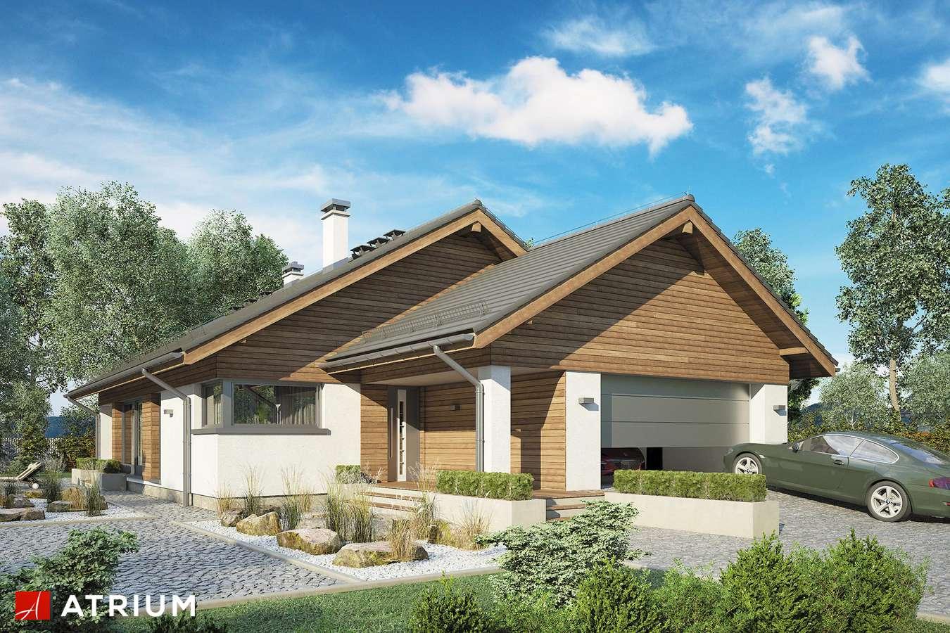 Projekty domów - Projekt domu z poddaszem PLISZKA VI - wizualizacja 1