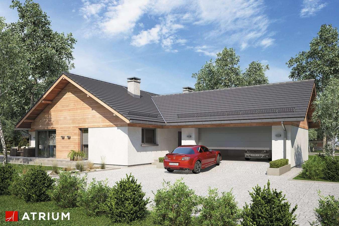 Projekty domów - Projekt domu parterowego WINSTON XVII - wizualizacja 1