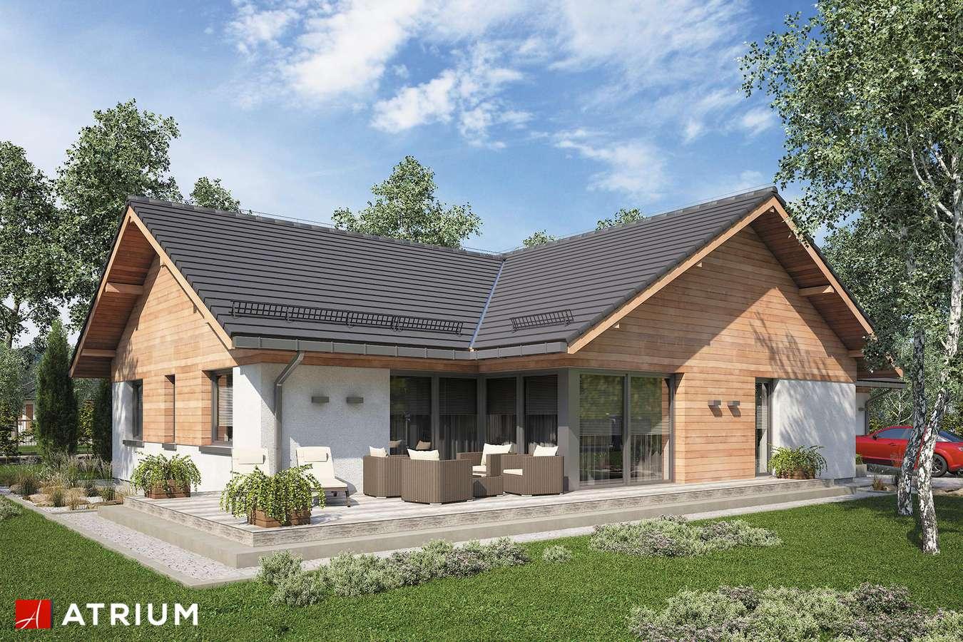 Projekty domów - Projekt domu parterowego WINSTON XVII - wizualizacja 2