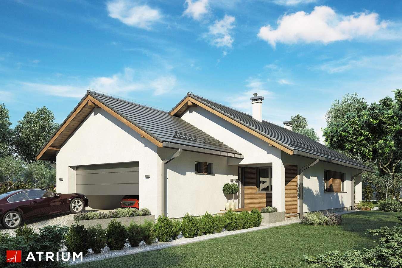 Projekty domów - Projekt domu parterowego SFINKS VII - wizualizacja 1