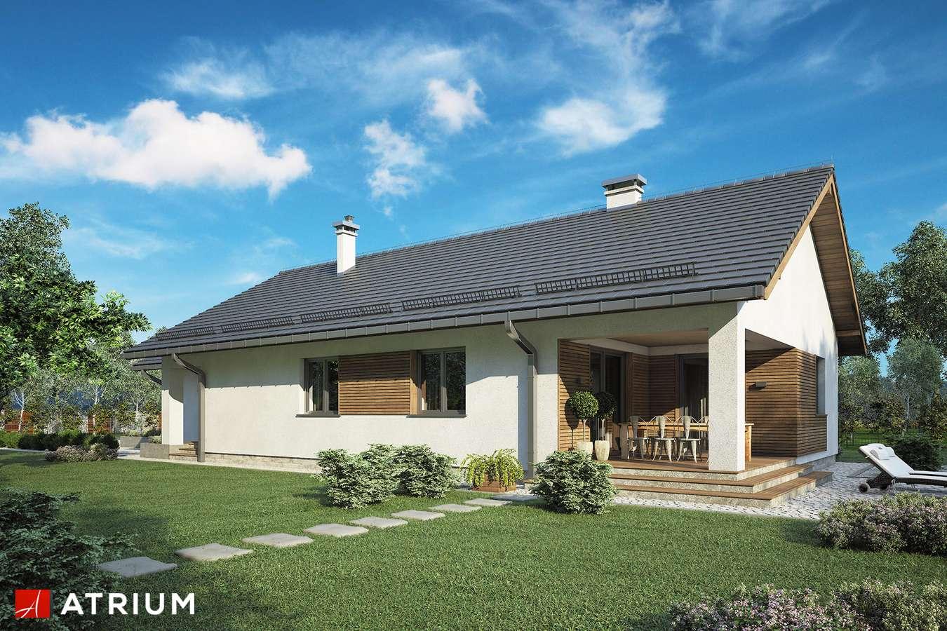 Projekty domów - Projekt domu parterowego SFINKS VII - wizualizacja 2