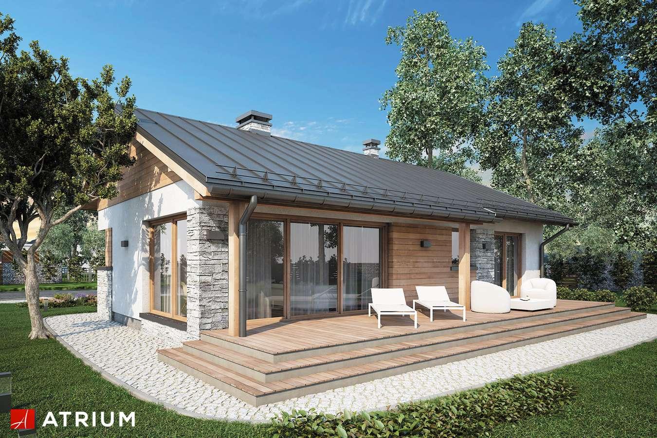 Projekty domów - Projekt domu parterowego ROBERTO - wizualizacja 1