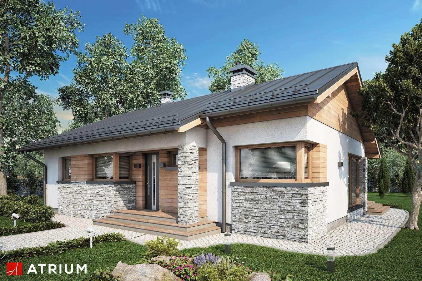 Projekty domów - Projekt domu parterowego ROBERTO - wizualizacja 2