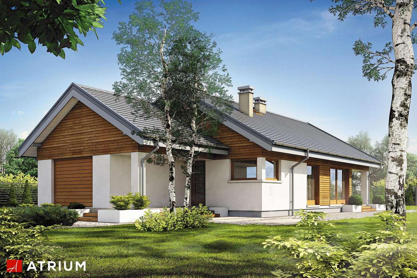 Projekty domów - Projekt domu parterowego PELIKAN SLIM II SZ - wizualizacja 1 - wersja lustrzana