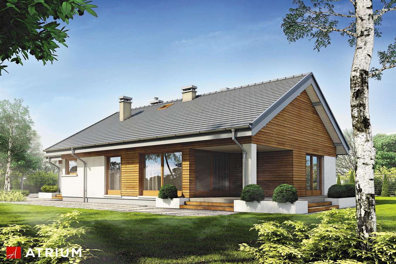 Projekty domów - Projekt domu parterowego PELIKAN SLIM II SZ - wizualizacja 2 - wersja lustrzana