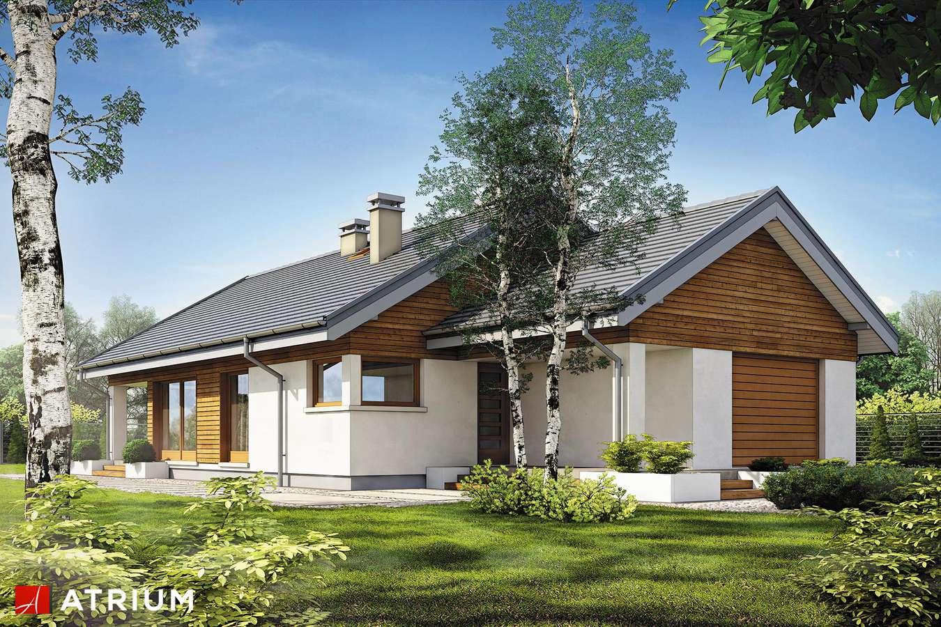 Projekty domów - Projekt domu parterowego PELIKAN SLIM II SZ - wizualizacja 1