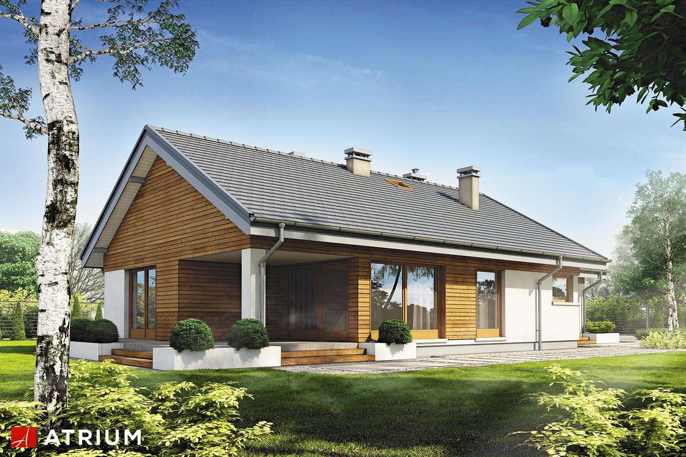 Projekty domów - Projekt domu parterowego PELIKAN SLIM II SZ - wizualizacja 2