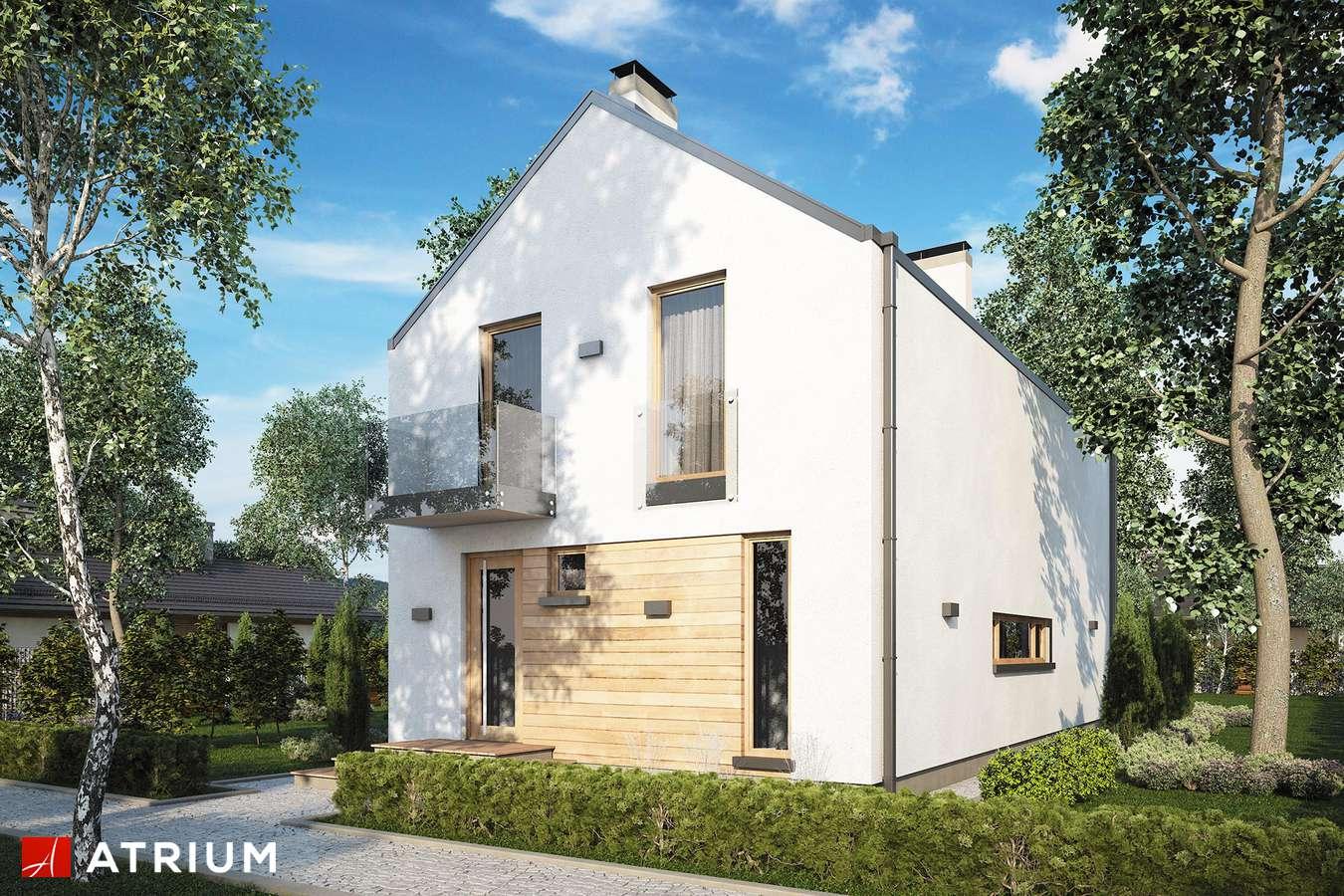Projekty domów - Projekt domu z poddaszem BRUNO - wizualizacja 1