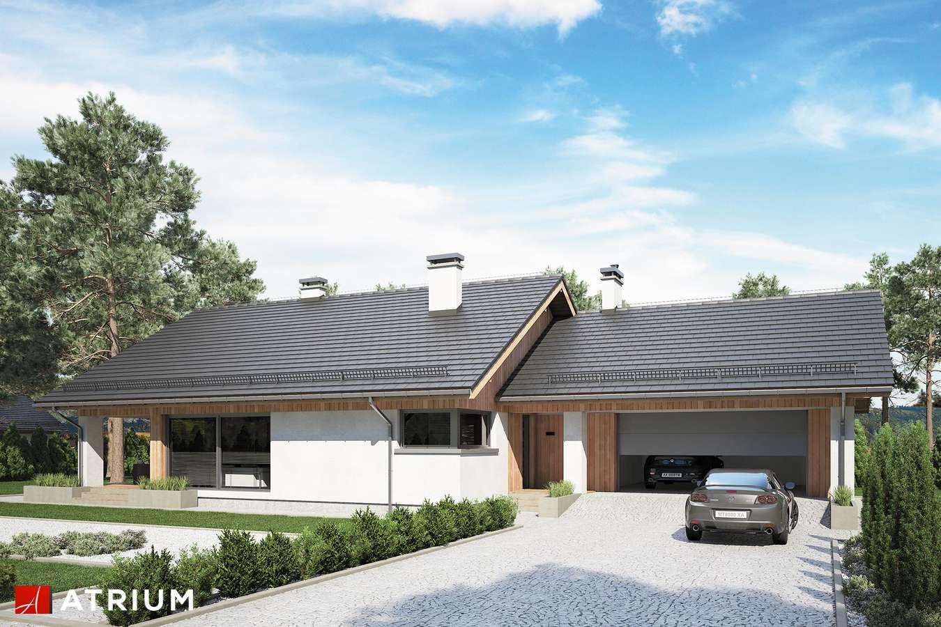 Projekty domów - Projekt domu parterowego KOS IX - wizualizacja 1
