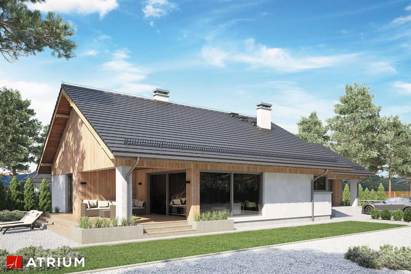 Projekty domów - Projekt domu parterowego KOS IX - wizualizacja 2
