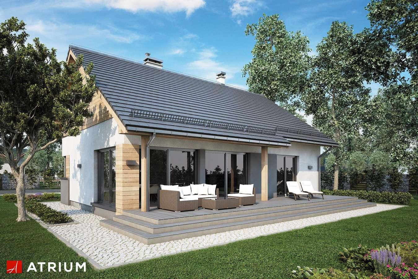 Projekty domów - Projekt domu parterowego ROY V SZ - wizualizacja 2