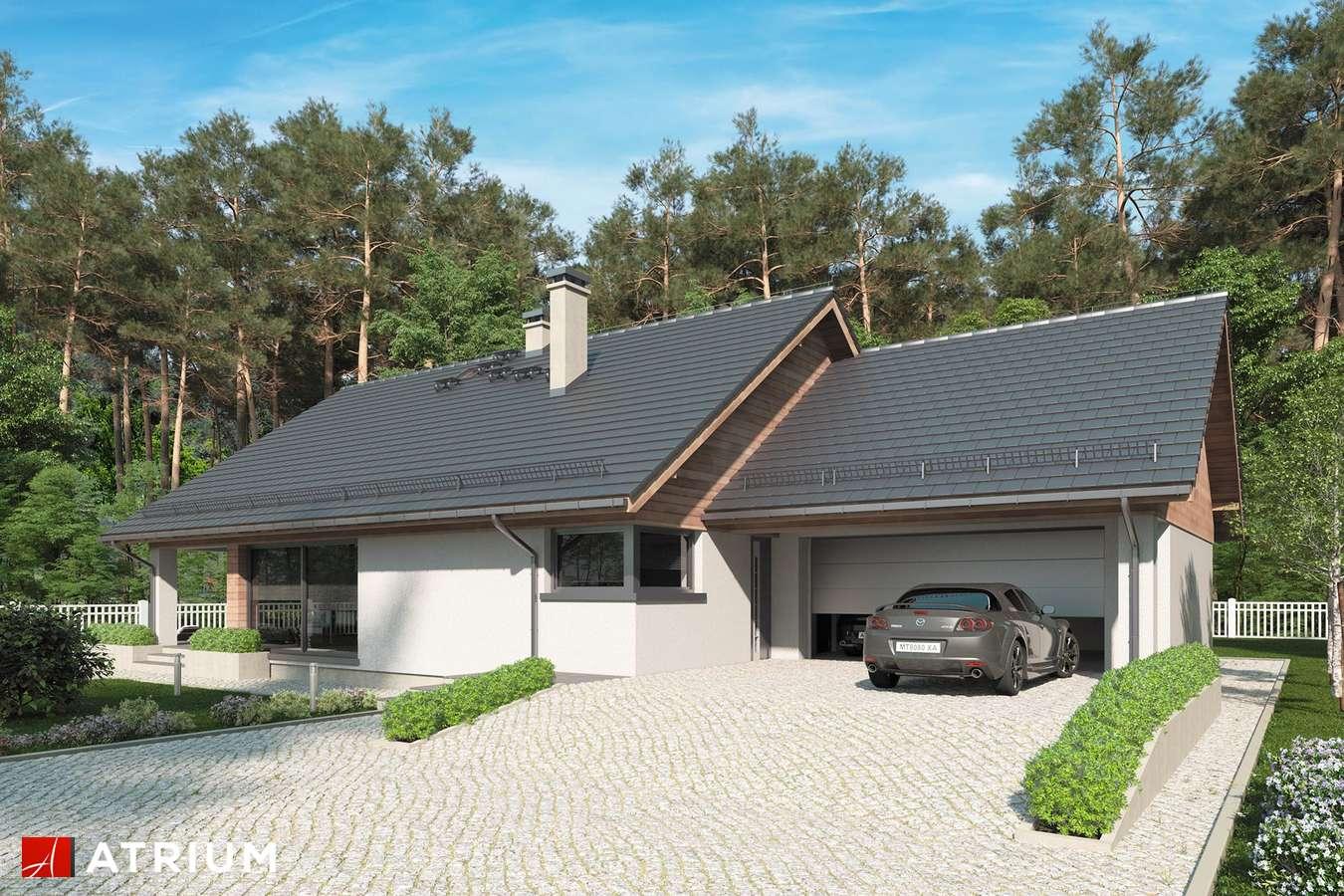 Projekty domów - Projekt domu parterowego MERLIN SP - wizualizacja 1