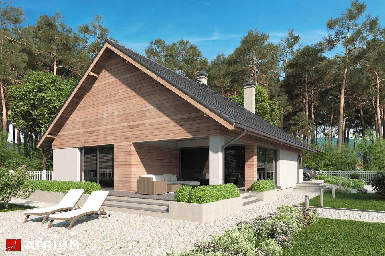 Projekty domów - Projekt domu parterowego MERLIN SP - wizualizacja 2